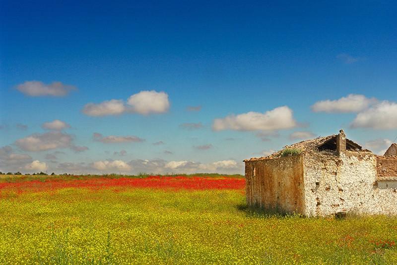 Placer l'horizon dans les photographies de paysage - le ciel