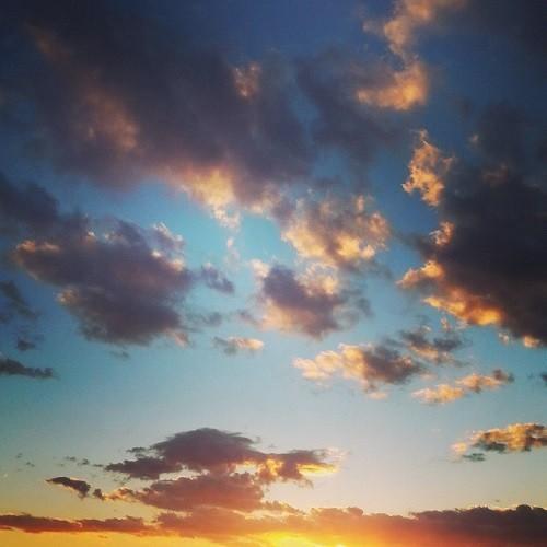 Minicervera Instagram 5