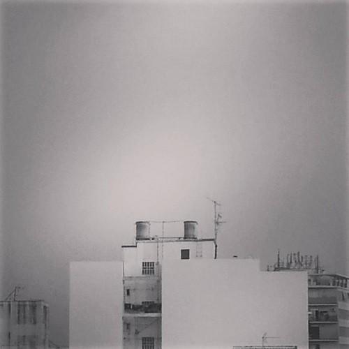 Minicervera Instagram 9
