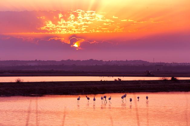 10 raisons d'utiliser un téléobjectif en photographie de paysage