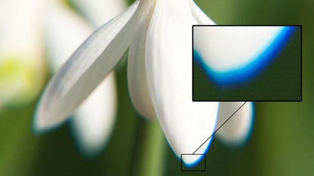 Aberrations chromatiques : qu'est-ce que c'est et comment les corriger ?