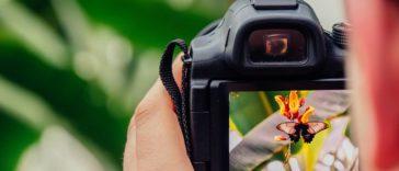 7 étapes pour devenir un bon éditeur photo