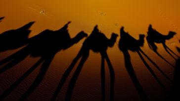 Photos d'ombres : nos astuces pour les réussir