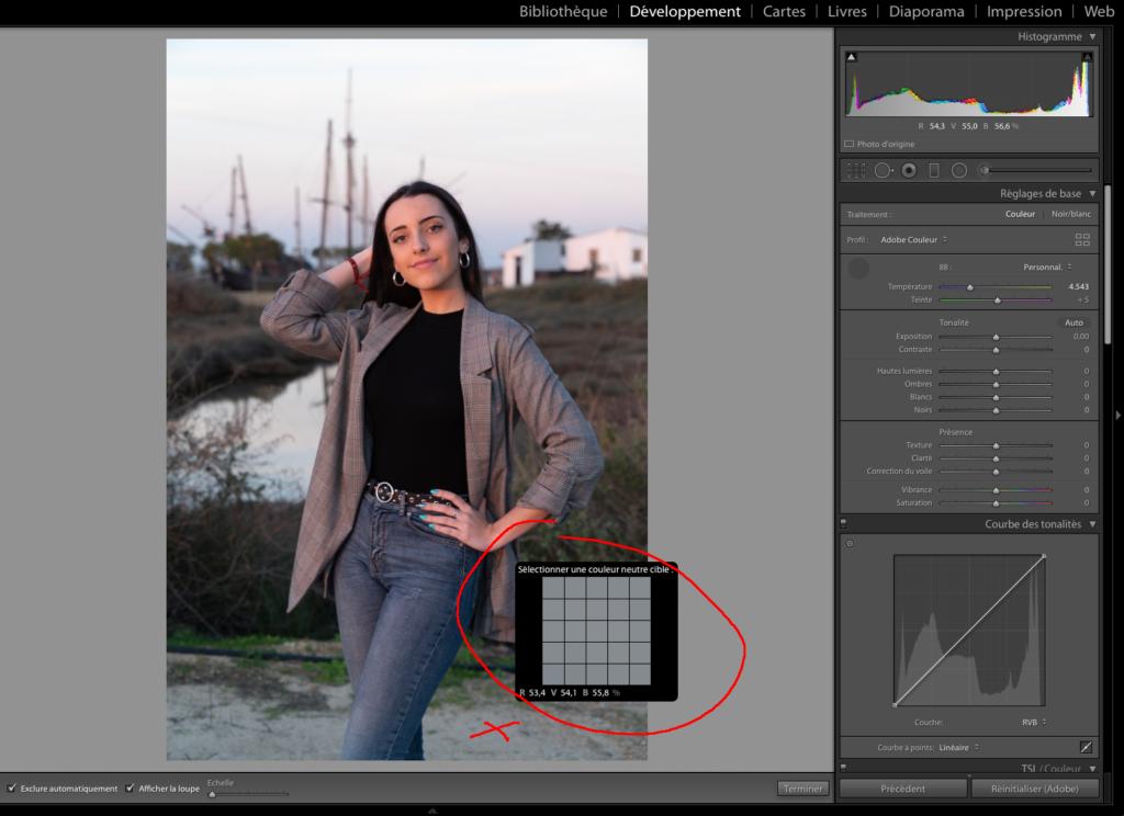 Utilisez une couleur neutre de la photo